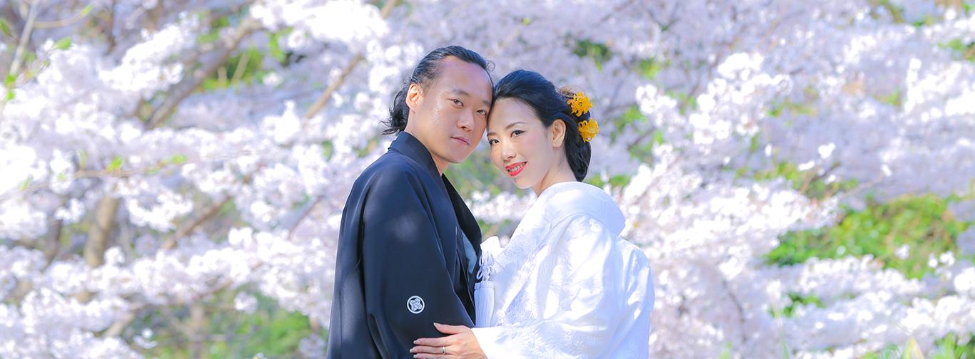 DE & Co. Decollte Wedding Photography in Japan. A Japanese Wedding Photo Studio.   德可莉日本專業婚紗攝影   Kyoto   京都   Sakura Romance   櫻花。絢爛