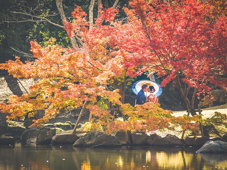 1奈良公園6