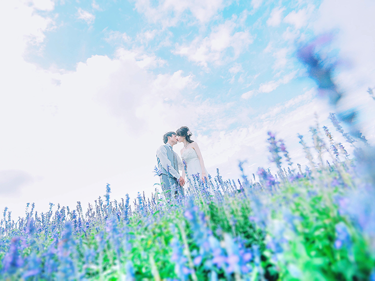 flower1_prewedding_japan